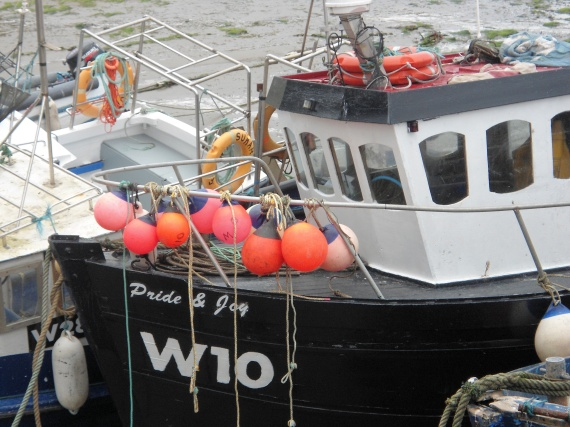 'Pride and Joy' at Boatstrand Harbour, Co. Waterford