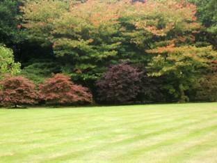 Mount Congreve Garden, Co. Waterford