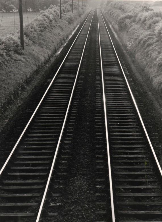 Railway Lines Photo: Frank Tubridy