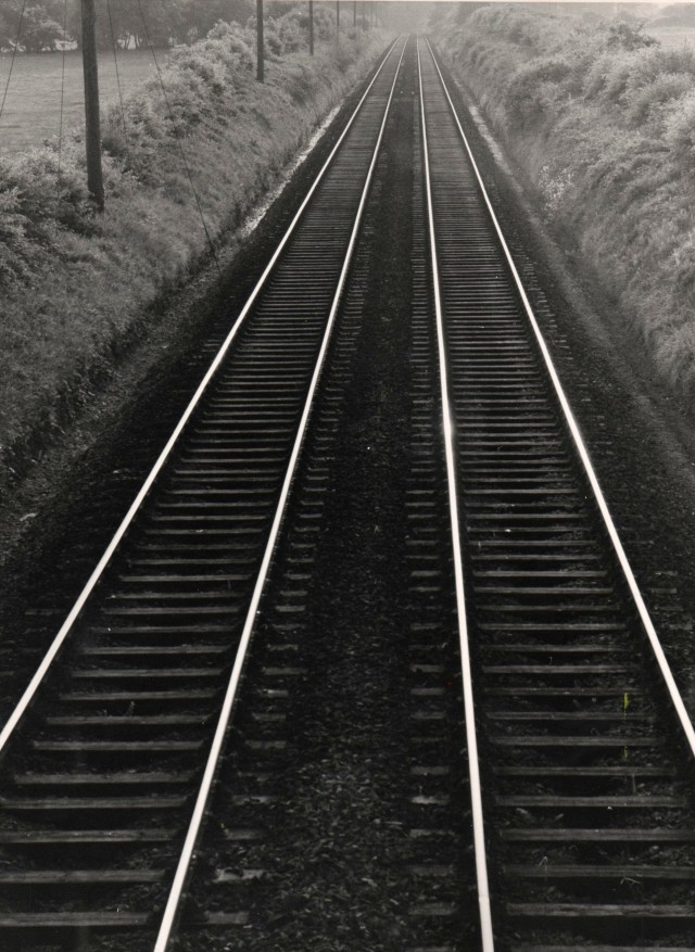 Railway Lines Photo: Frank Tubridy