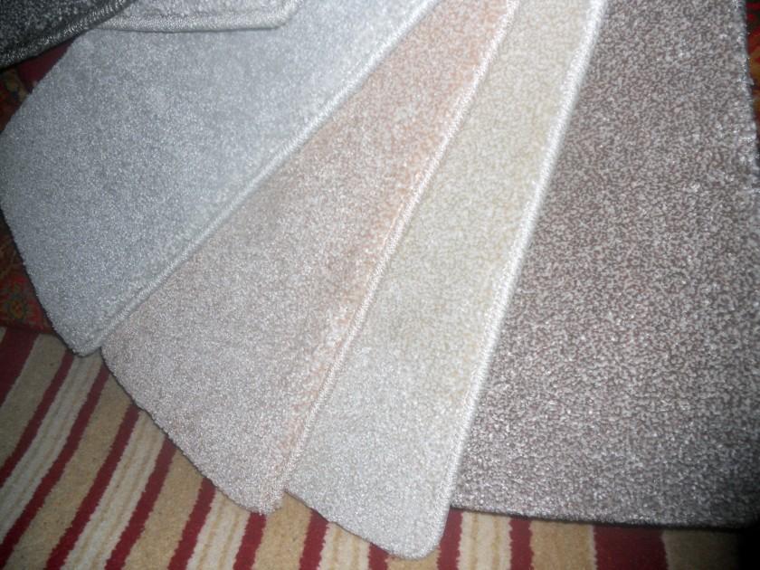 Carpets, Carpets Everywhere!