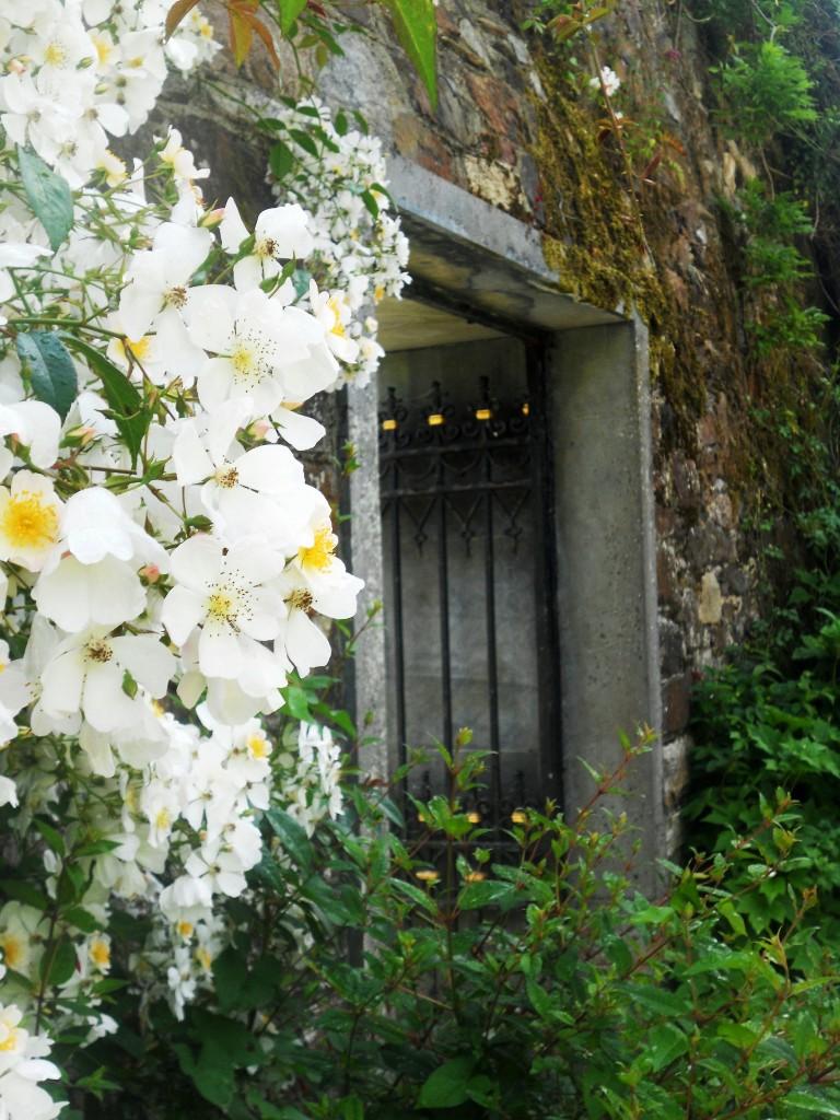 Mount Congreve Garden,