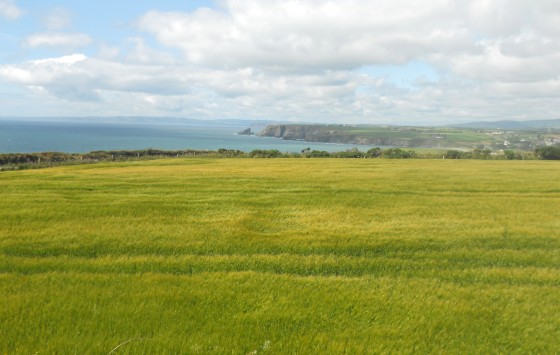 From Tankardstown towards Helvic, Co. Waterford