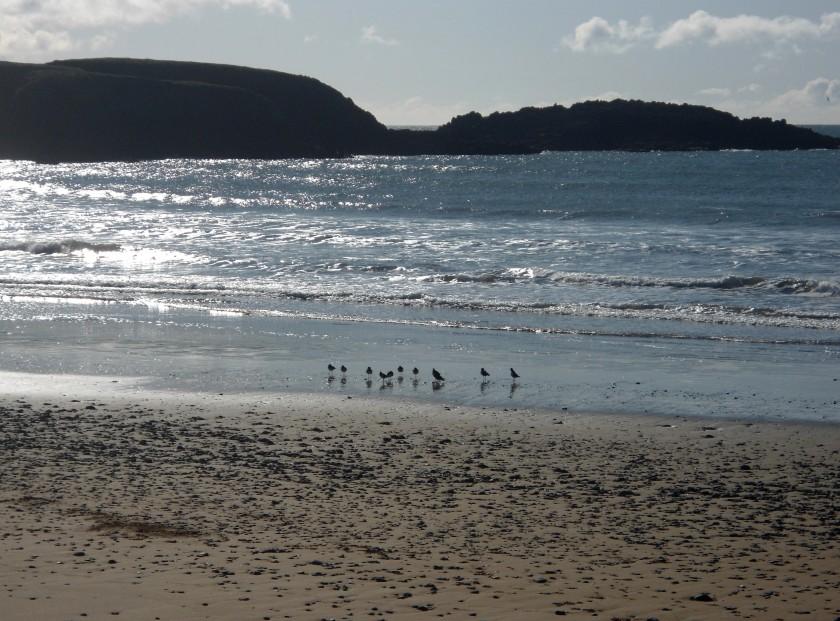 Annestown Beach, Co. Waterford, Ireland