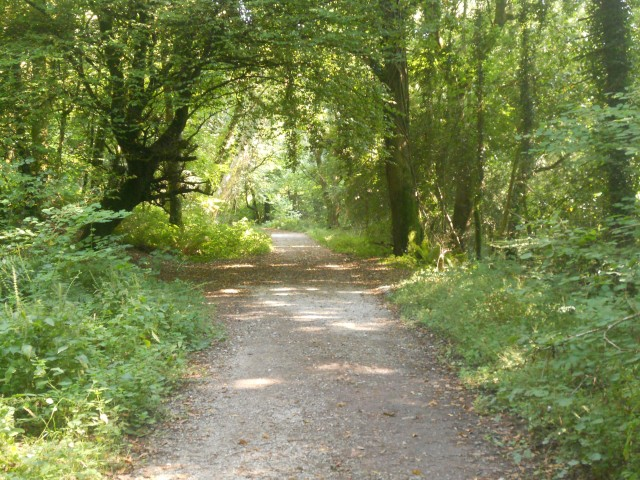 Ballysaggart, Co. Waterford