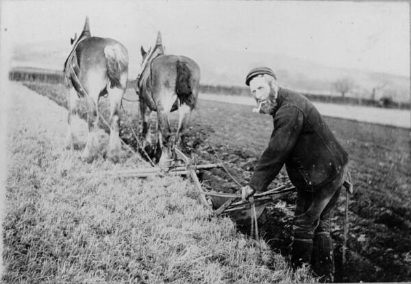 Horse Drawn Plough c.1900 Source: www.livingmemory.org.uk