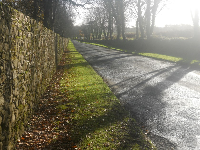 Ballinamona Road from Waterford City to Tramore