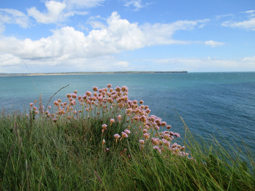 Tramore Bay from The Cliff Road.
