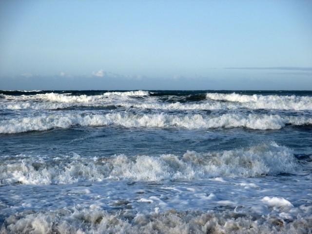 Salty Waves
