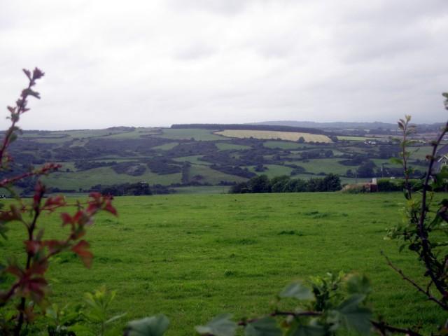 Land below Gaulstown Dolmen, Co. Waterford.