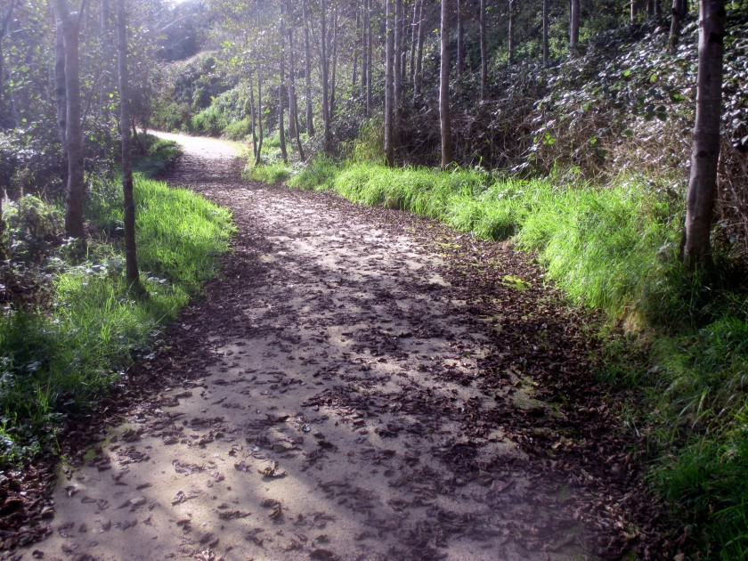 The Anne Valley Trail