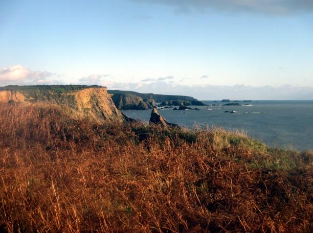 The Copper Coast