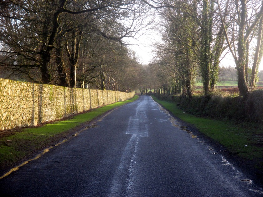 The Ballinamona Road, Co. Waterford.