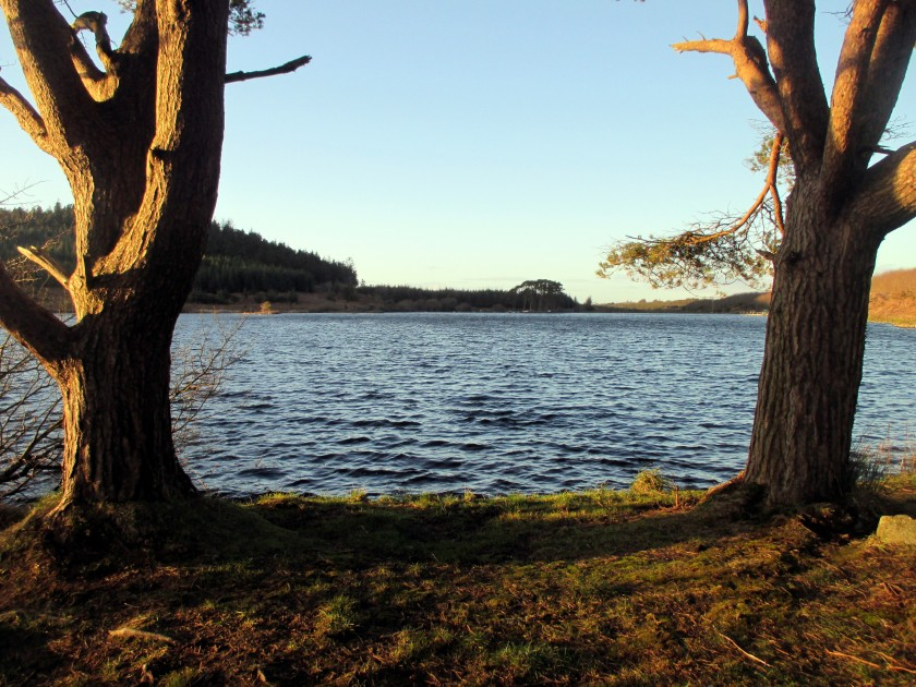 Carrigavantry Lake