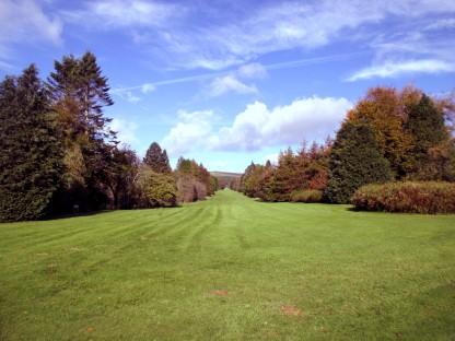 Long Vista at J.F. Kennedy Arboretum